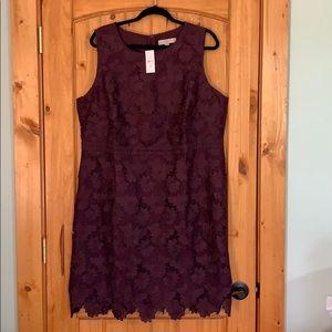 Loft Floral Scalloped Lace Dress